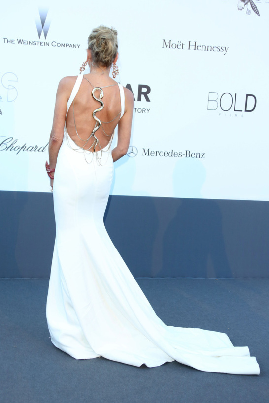 celebrities_en_gala_amfar_2013_en_cannes_939784233_800x